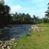 Batang Antokan di kampung saya di Lubuk Basung, Kabupaten Agam, Sumatera Barat